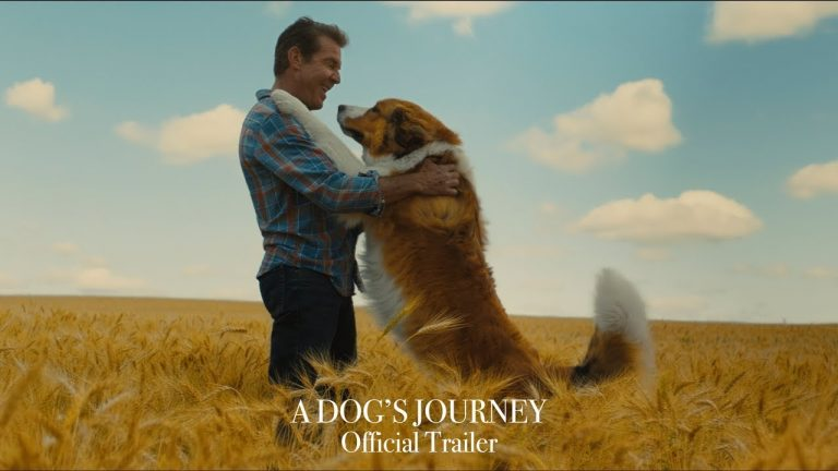 Trailer A Dog's Journey